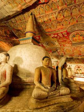 Culture Trip Sri Lanka